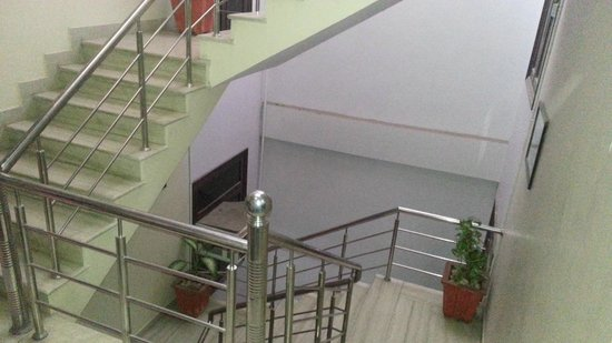 Hotel Ramsingh Palace: Staircase