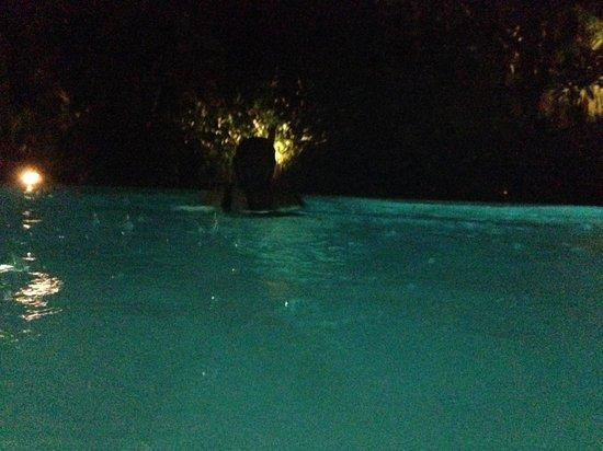 Swiss-Belhotel Segara Resort & Spa : 24Hr pool