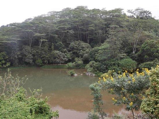 Amaya Hunas Falls: Lake