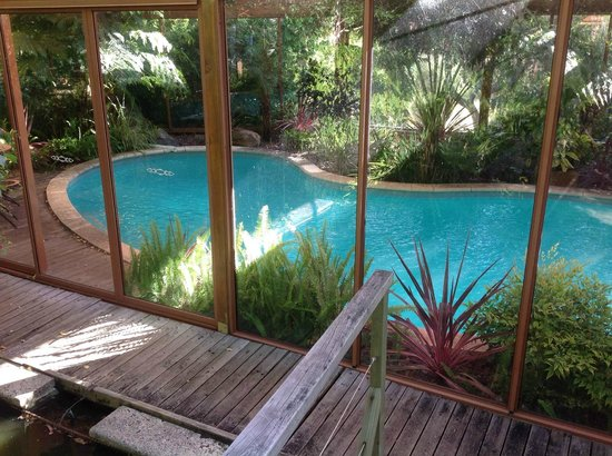Chimes Spa Retreat: pool surrounded by gardens