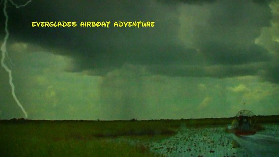 Museum of Discovery and Science: Everglades airboat ride simulator