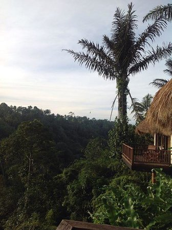 Nandini Bali Jungle Resort & Spa: sunset view from silent hut