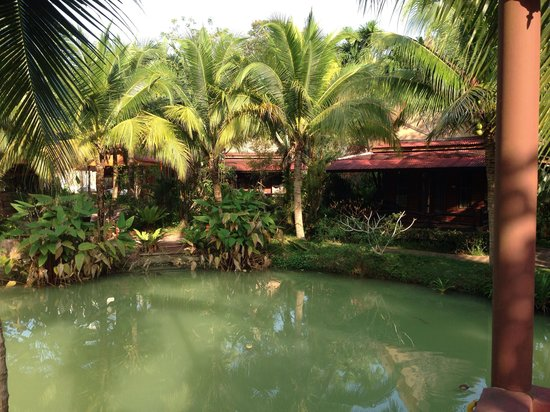 Green View Village Resort: Прудик в отеле.