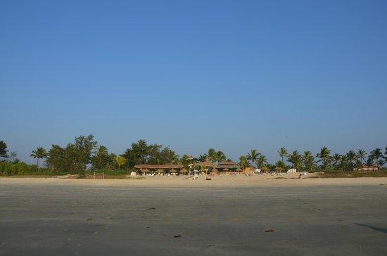 Caravela Beach Resort: View from Beach