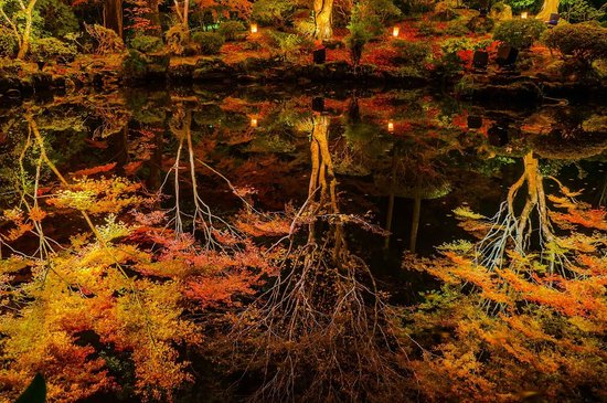 Matsushima-machi, Jepang: 池に映り込む紅葉。まるで鏡のような綺麗な反射です。