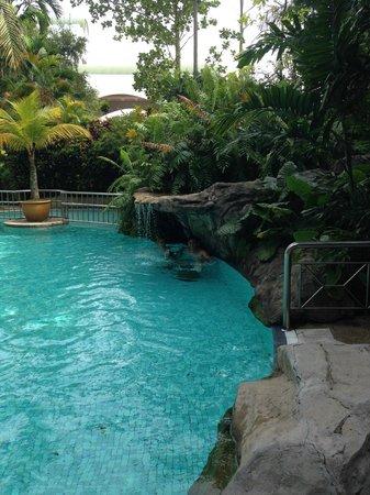 Sama-Sama Hotel KL International Airport: Pool and waterfall