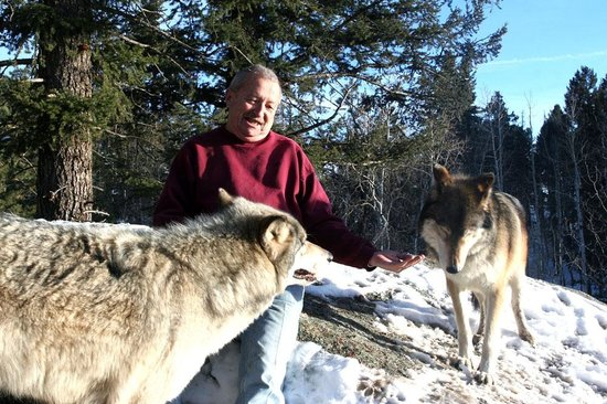 Colorado Wolf and Wildlife Center : Keara & Micha