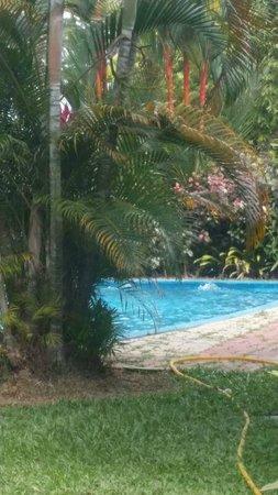 A'Famosa Resort Hotel Melaka : Pool