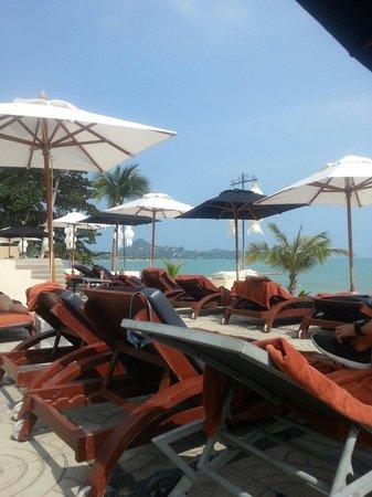 Pavilion Samui Villas & Resort : Bequeme und ausreichend viele Liegen am Strand und Pool