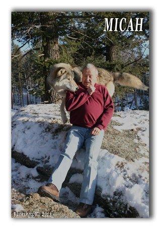 Colorado Wolf and Wildlife Center: Micah havin fun