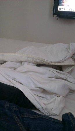 The Belair: comforter
