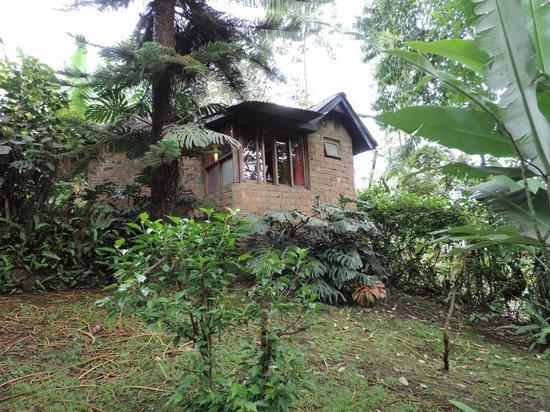 Moyoni Lodge: Au milieu du jardin
