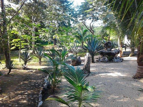 Itour Akumal Villas Tortugas: Vue de la chambre
