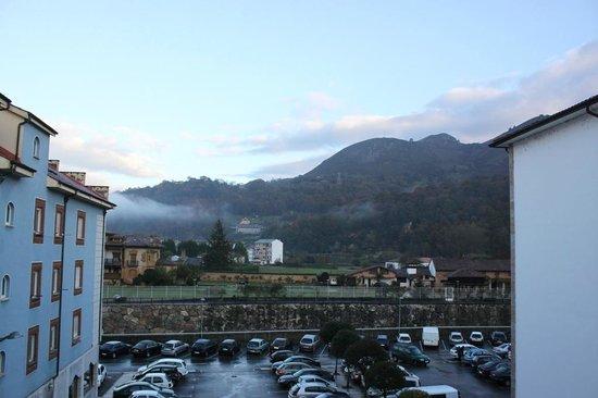 Hotel Los Lagos Nature: Vistas desde habitación