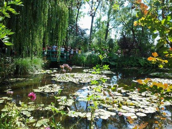 Lago del jardin magnifique photo de maison et jardins de for Lagos de jardin