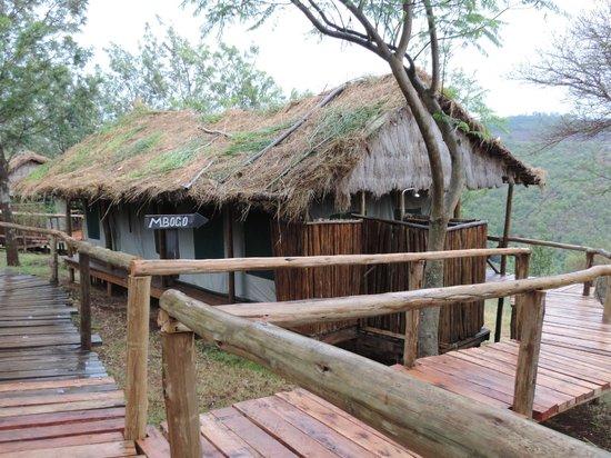 Ngorongoro Forest Tented Lodge: En face de la colinne