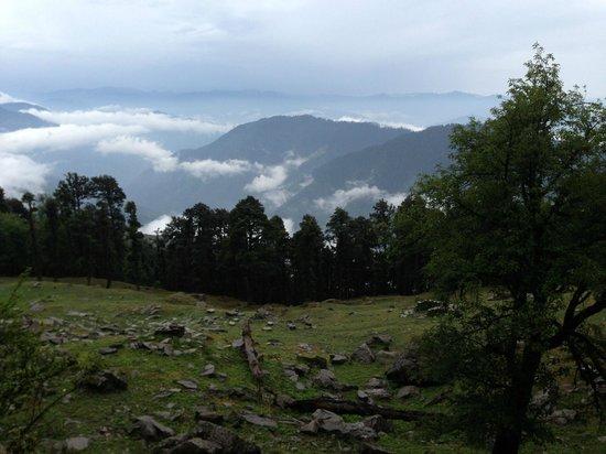 Banjara Retreat & Cottage - Sojha: Sojha Walk