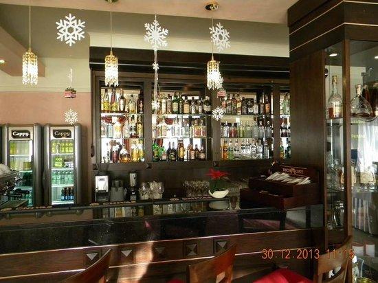Hotel Verde Montana Wellness & Spa : Bar