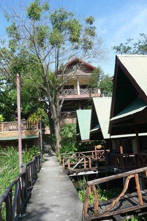 Blue Star Guest House : Resort