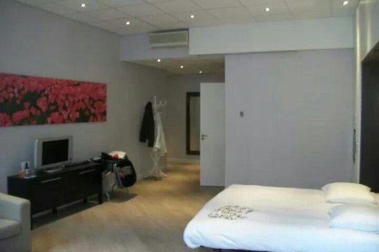 Hotel Amsterdam - De Roode Leeuw: Suite