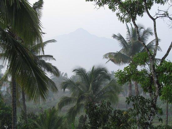 Karakkatt Holiday Home: view from the  roof