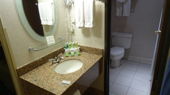 Holiday Inn Express Mesa Verde-Cortez: bathroom. no door.