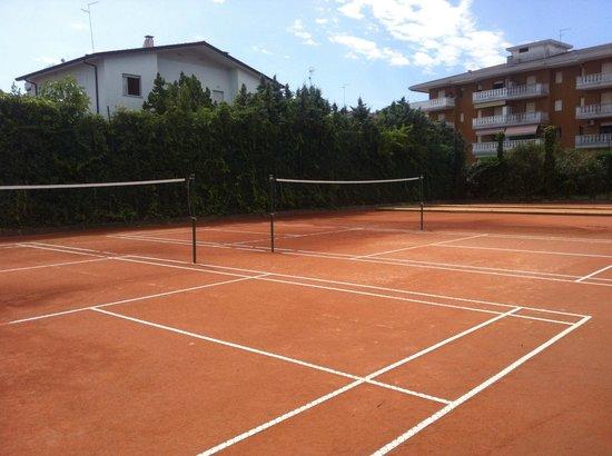 Hotel al Cigno: Campo di badminton