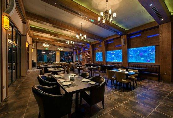 Best Restaurants In Abu Dhabi For Lunch