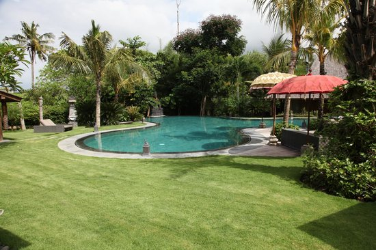 Bali Ethnic Villas: Pool