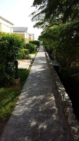 El Cardonal Apartments: Walkway to apartments Nov 2013