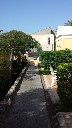 El Cardonal Apartments: Garden Walkway Nov 2013
