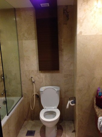 Mercure Batam: Toilet view