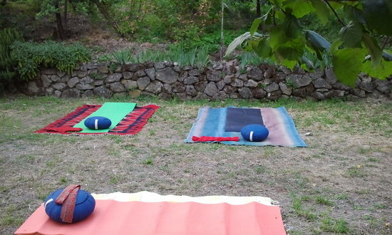Homelifebed Colli Euganei: yoga open air
