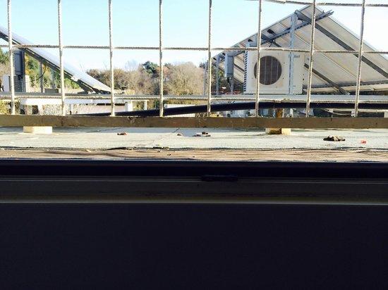 Hotel Palace Nardo : Feci di cane viste dalla finestra della nostra camera