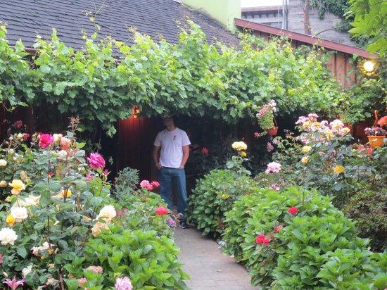 Fogon  Las Buenas Brasas: Hydrangias and Roses