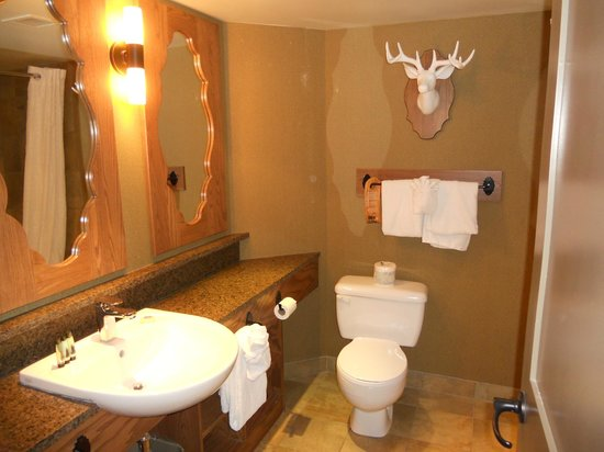Banff Caribou Lodge & Spa : Bathroom
