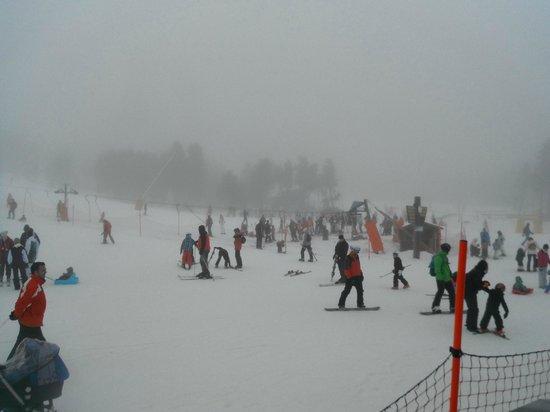 Station de Ski - Font Romeu Pyrénées 2000 : ski