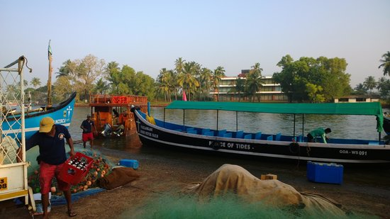 Goa Aquatics: Dive Boat