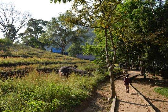 Ella Jungle Resort : Paths inside the resort