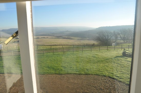 Hermitage Court Farm: View from room