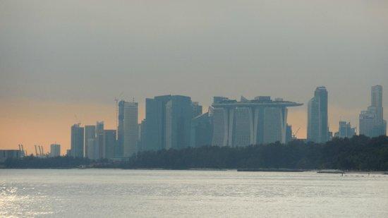 Jumbo Seafood : Singapore in der Ferne