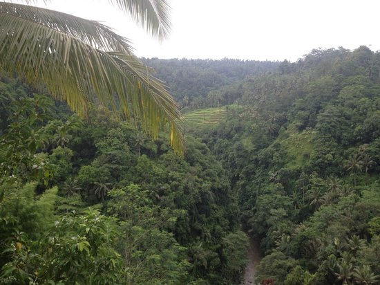 Ayung Resort Ubud : Can't stop making pictures!