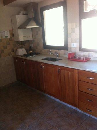 Catalonia Sur Aparts & Spa : Kitchen area