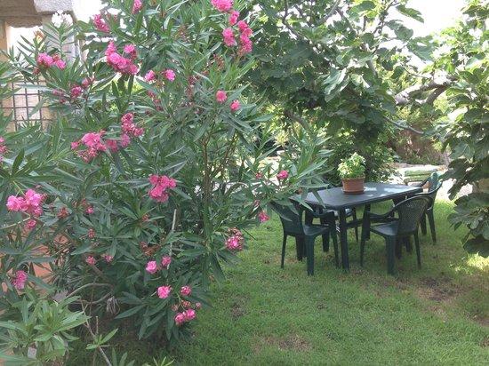 Resort Cava Francese: Il giardino mediterraneo