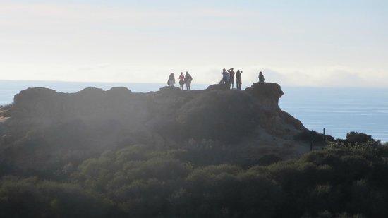 Torrey Pines State Natural Reserve : tourists up top