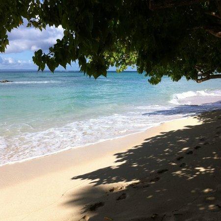 Luxury Bahia Principe Cayo Levantado Don Pablo Collection: Hotels private beach.