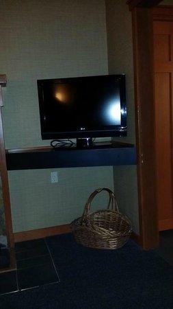 Salish Lodge & Spa : tv