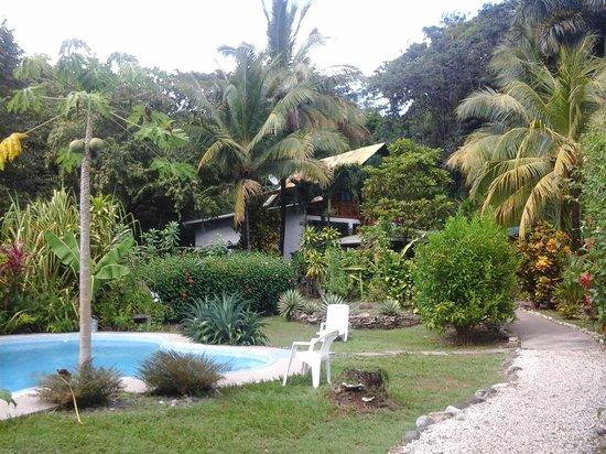 Hotel Entre Dos Aguas: tropical setting