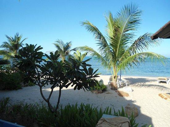 Nora Beach Resort and Spa: Sicht vom Sala
