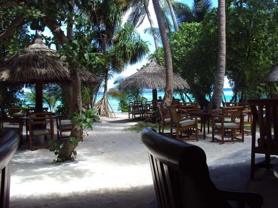 Filitheyo Island Resort: The view from the main bar!